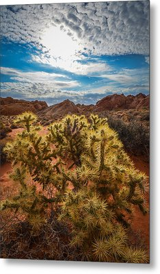 Untitled Metal Print by Steve Smith