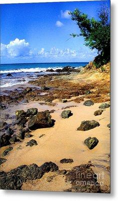 Vieques Beach Metal Print by Thomas R Fletcher