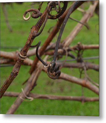 Vineart . Vat 3.6 Metal Print