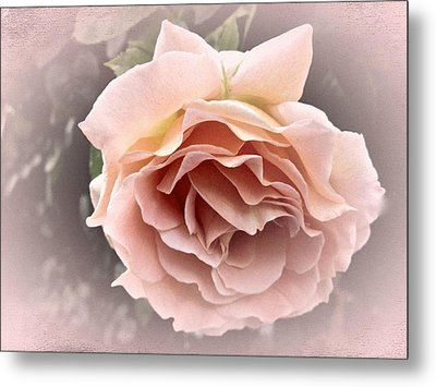 Vintage Rose No. 3 Metal Print by Richard Cummings