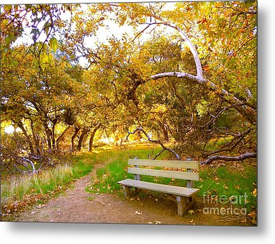 Visionary's Path Metal Print by Gem S Visionary