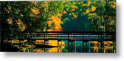 Metal Print featuring the photograph Walkway by Steve Godleski