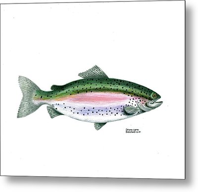 Wallace Brantley Sport Fishing Series Rainbow Trout Metal Print by Sharon Blanchard