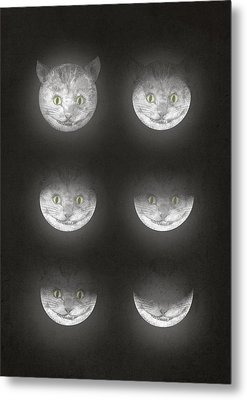 Waning Cheshire Metal Print by Eric Fan