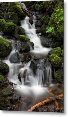 Waterfall Mount Rainier National Park Metal Print by Bob Noble Photography