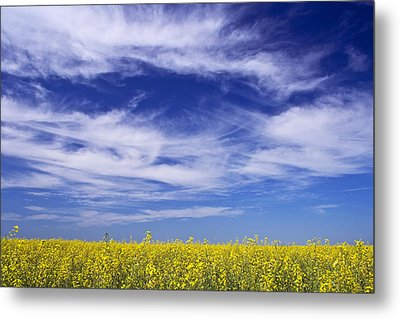 Metal Print featuring the photograph Where Land Meets Sky by Keith Armstrong