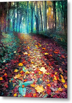 Where Leaves Gather Metal Print