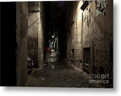 Who Goes There Metal Print by Marion Galt