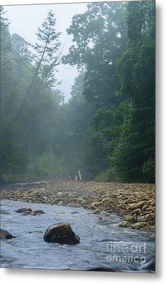Williams River Summer Mist Metal Print by Thomas R Fletcher