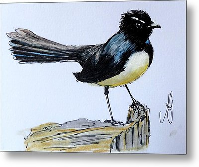 Willy Wagtail Metal Print