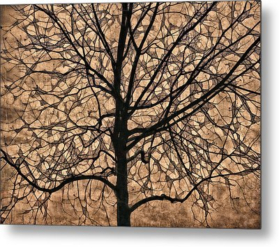 Windowpane Tree In Autumn Metal Print
