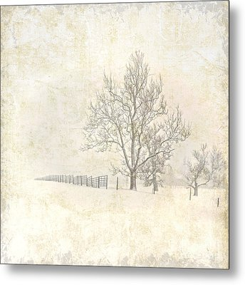 Winter On The Farm Metal Print