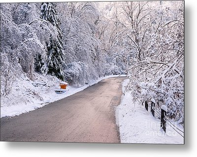 Winter Road After Snowfall Metal Print by Elena Elisseeva