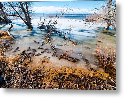 Winter Shore At Barr Lake Metal Print