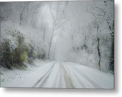 Winter Wonderland Metal Print by Bill Cannon