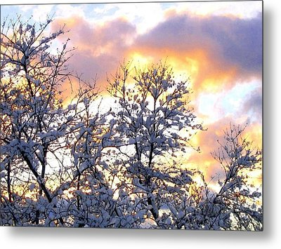 Wintry Sunset Metal Print by Will Borden