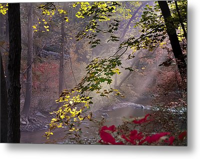 Wissahickon Autumn Metal Print by Bill Cannon