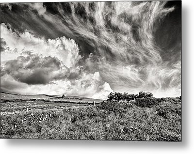 Written In The Wind Metal Print by William Beuther