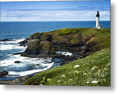 Yaquina Head Lighthouse Metal Print by Carrie Cranwill
