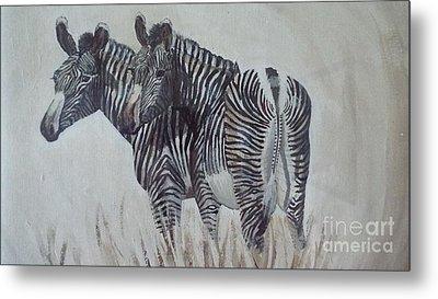 Zebras Metal Print