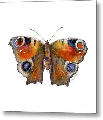 10 Peacock Butterfly Metal Print by Amy Kirkpatrick