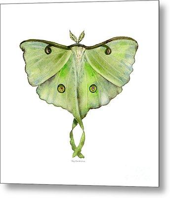 100 Luna Moth Metal Print