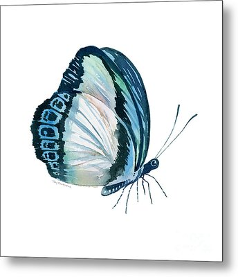 101 Perched Danis Danis Butterfly Metal Print by Amy Kirkpatrick