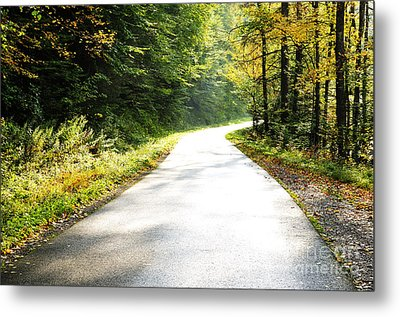 Williams River Scenic Backway Metal Print by Thomas R Fletcher