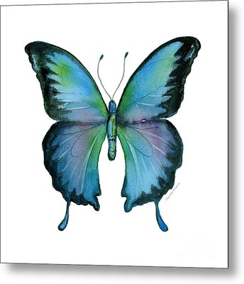 12 Blue Emperor Butterfly Metal Print by Amy Kirkpatrick