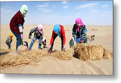 Desertification Prevention Metal Print