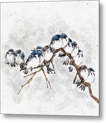 12 On A Twig Metal Print by Marian Voicu
