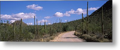 Road Passing Through A Landscape Metal Print by Panoramic Images