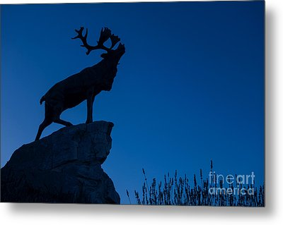 130918p142 Metal Print by Arterra Picture Library