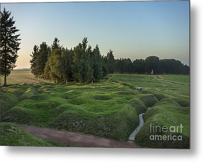 130918p146 Metal Print by Arterra Picture Library