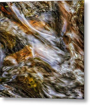 Fine Art Nature Photography By Joanne Bartone Metal Print