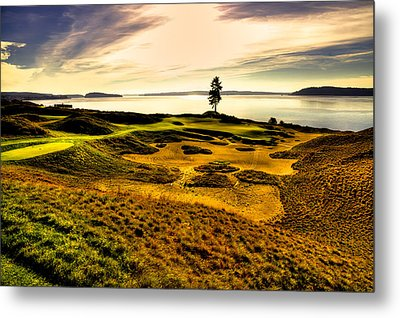 #15 At Chambers Bay Golf Course  Metal Print