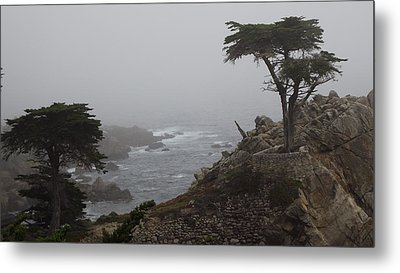 17 Mile Drive Cypress Tree Metal Print by Linda Aiassa