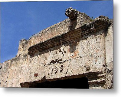Metal Print featuring the photograph 1796 by Lew Davis