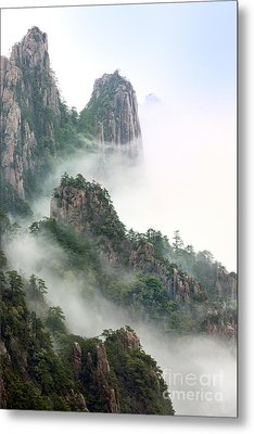 Beauty In Nature Metal Print by King Wu