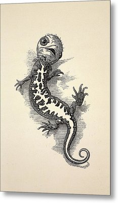 1863 Kingsley Waterbabies Human Newt Metal Print by Paul D Stewart