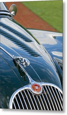 1960 Jaguar Xk 150s Fhc Hood Ornament 3 Metal Print by Jill Reger