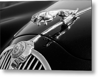 1964 Jaguar Mk2 Saloon Hood Ornament And Emblem Metal Print by Jill Reger