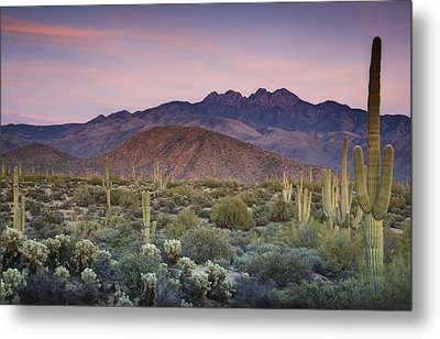 A Desert Sunset  Metal Print