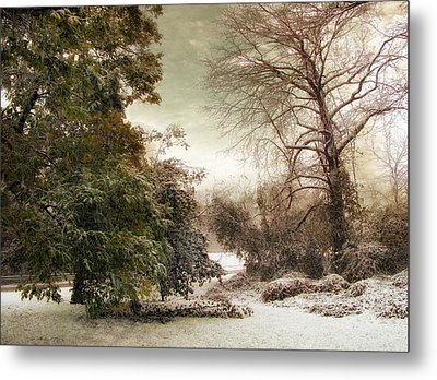 A Dusting Of Snow Metal Print by Jessica Jenney