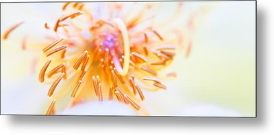 Abstract Flower Metal Print by Ulrich Schade
