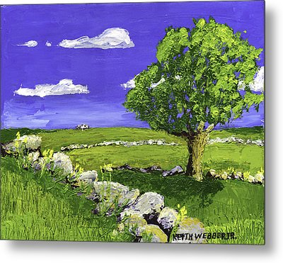 Tree In Maine Blueberry Field Metal Print by Keith Webber Jr