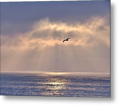 Metal Print featuring the photograph Abundance by Nick David