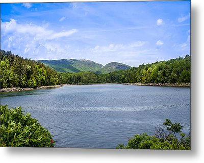 Metal Print featuring the photograph Acadia National Park by Trace Kittrell