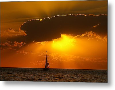 After The Storm Metal Print by Randy Pollard
