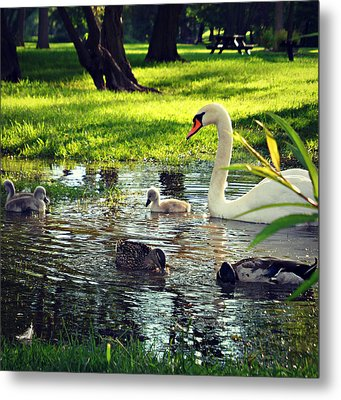 All In The Family Metal Print